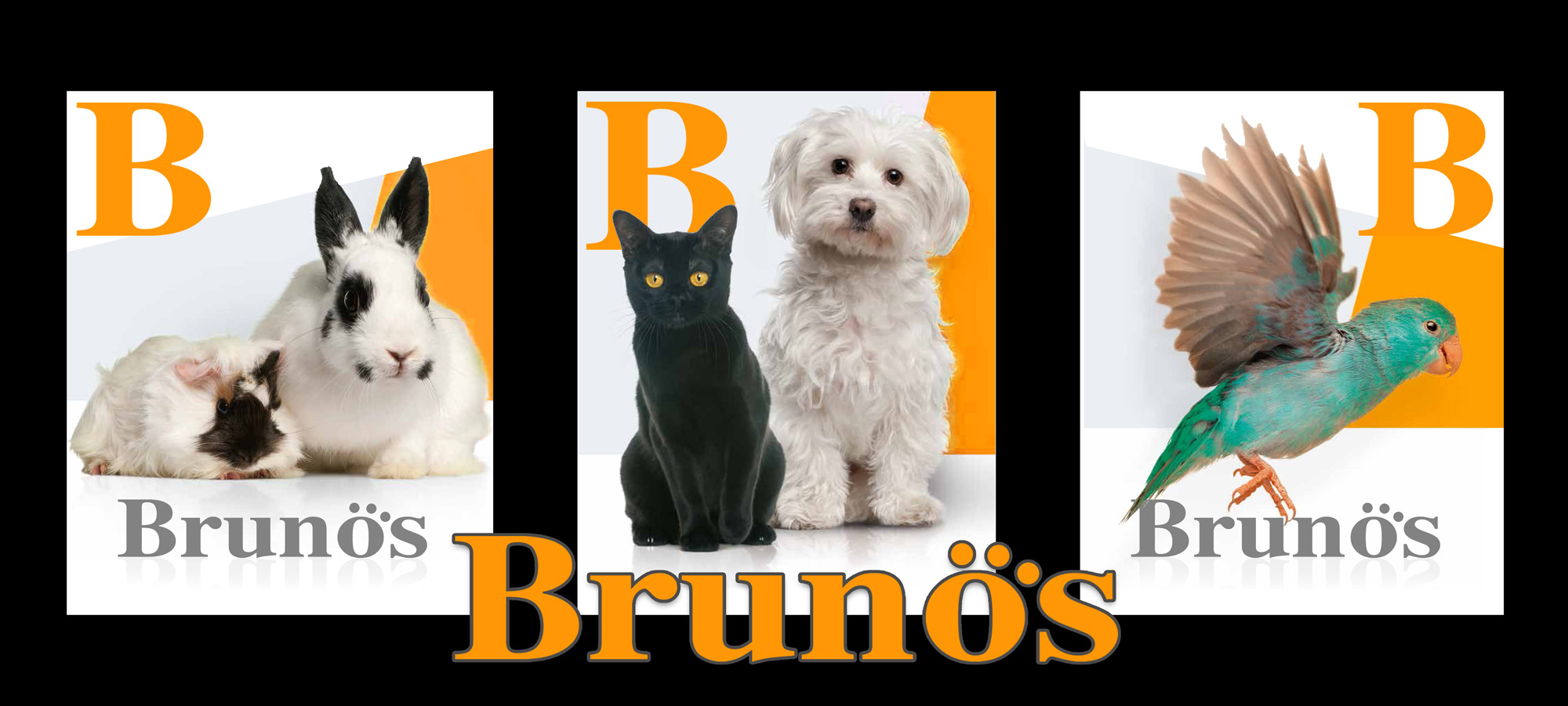 brunos pet shop